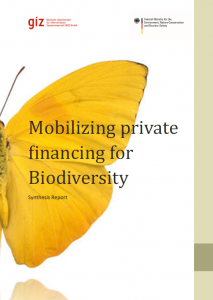 private-financing-for-biodiv-synthesis